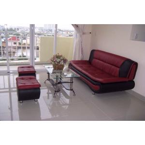 Tìm hiểu về bộ Sofa phòng khách giá rẻ đẹp và hiện đại P4
